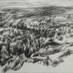 Rio Cega 2017 charcoal  pencil on paper, 21x29cm