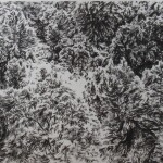 Tejadilla 10, 2018 charcoal   pencil on paper 29.5x84cm Private collection