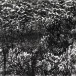 Tejadilla 3, 2017/19   Print, 220x80cm